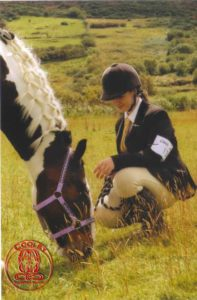 Grazing pony, Cooley Equestrian Centre, Cooley, Moville, Co Donegal